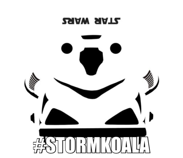Storm Koala Coalition for Less QQing in MMOs
